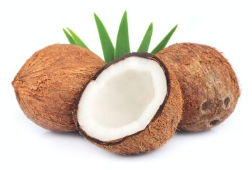10-ml-arome-noix-de-coco-fa-coco-flavor-coconut
