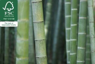 bamboo-flooring-fsc-certification
